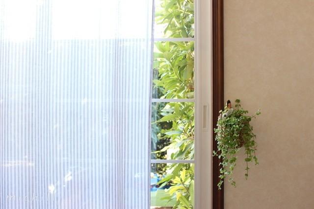 毎週金曜日に花を飾るのがわが家の習慣なのですが、お世話がラクチンなグリーンは、年中絶やさず、リビングやキッチンに飾っています。
